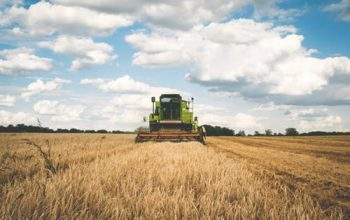 What Insurance Does a Farm Need?