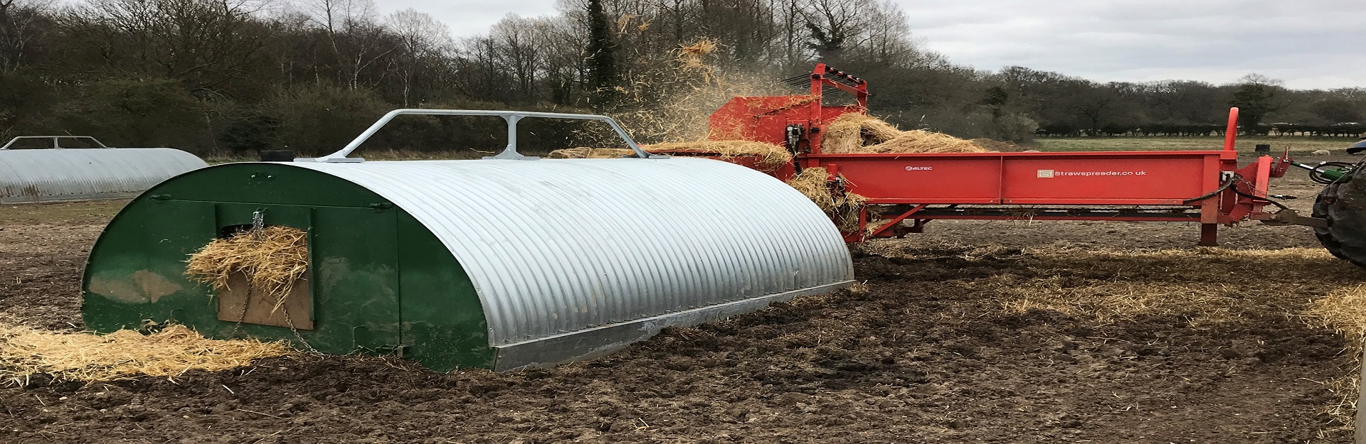 Pig Special - Book a demo today and see how much you could save