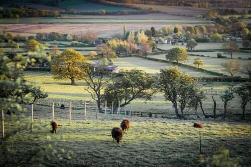 uk-farm-type